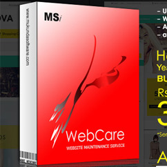 WebCare 2014 Year End Sale