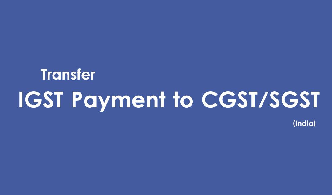igst-to-cgst-sgst-payment-transfer-adjust