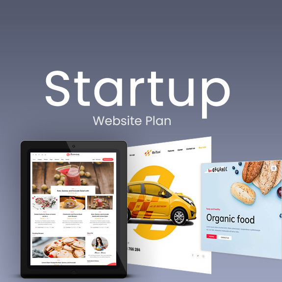 Startup Business - Website Plan