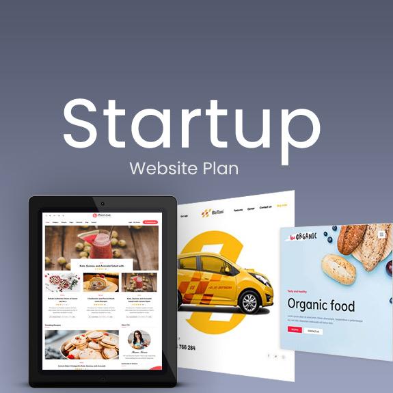 Startup Business - Website Plan